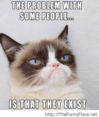 grumpy cat_people