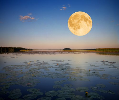 Moon over lake