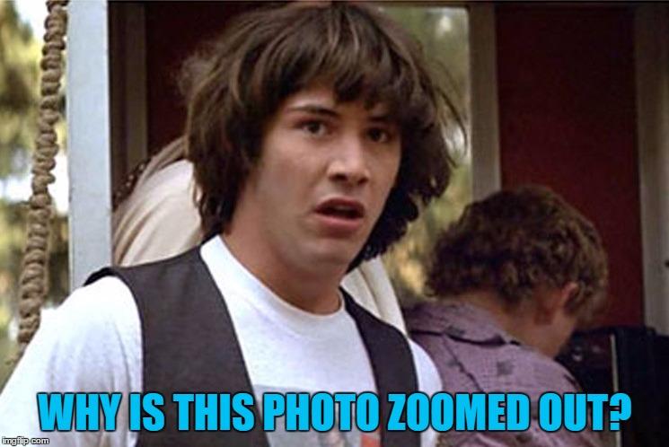 Some of my Favorite Ted Theodore Logan (Keanu Reeves)Memes!